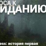 Летопись Bless: история первая